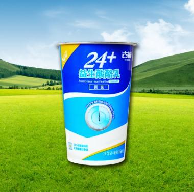 24+原味杯装酸牛奶