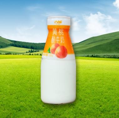 瓶装-黄桃酸牛奶